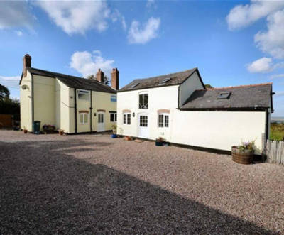 Meadow View Dogs, Doggy Daycare, Boarding, Oakenholt, Flintshire, North Wales